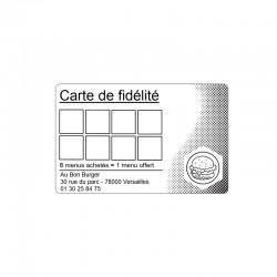 500 Cartes en papier cartonné Blanc - 54 x 86 mm - C2511